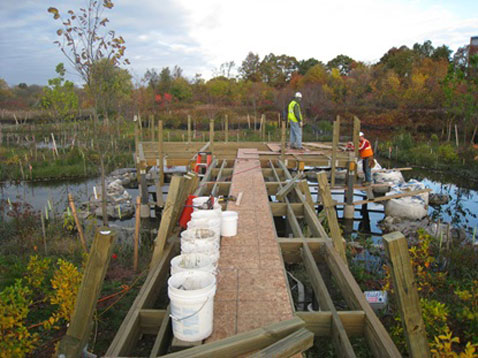 Photo of wetland construction