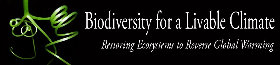 Biodiversity for a Livable Climate conference logo